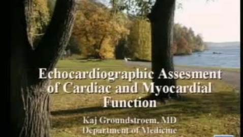 Thumbnail for entry Echocardiographic Assessment of Cardiac and Myocardial Function