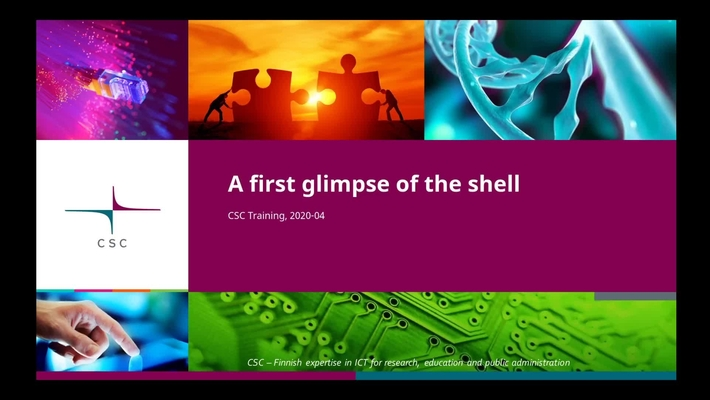 Introduction to Linux: 4/1 First glimpse of the shell - the shell