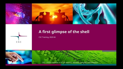 Thumbnail for entry Introduction to Linux:  4/4 First glimpse of the shell - files