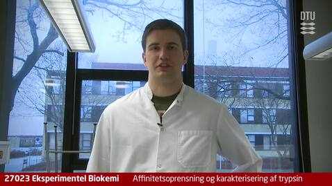 Thumbnail for entry Video 09: Affinitetsoprensning og karakterisering af trypsin