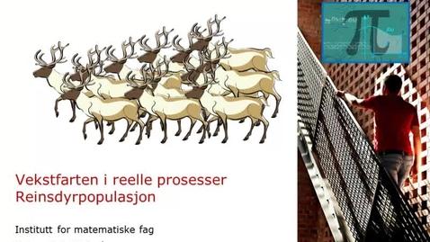 Thumbnail for entry Vekstfarten i reelle prosesser - Reinsdyrpopulasjonen