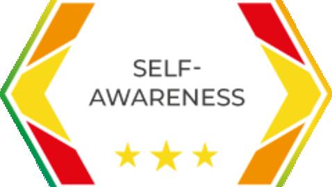 Thumbnail for entry SOSTRA Self-awareness