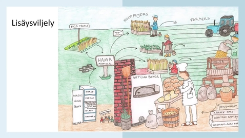 Thumbnail for entry Ajankohtaisa maatiaisviljojen lisäysverkostosta