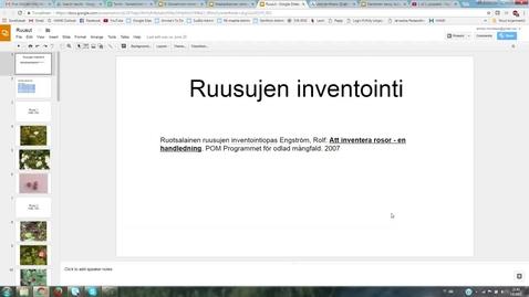 Thumbnail for entry Ruusujen määrittely