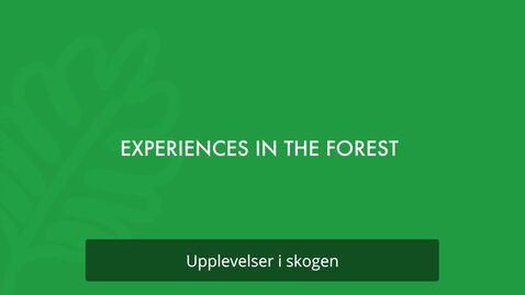 Thumbnail for entry Upplevelser i skogen, svensk text