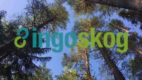 Thumbnail for entry Reiselivsbedriftene og deres forretningsmodeller. Marius Kjønsberg och Hans Holmengen, Høgskolen i Innlandet.