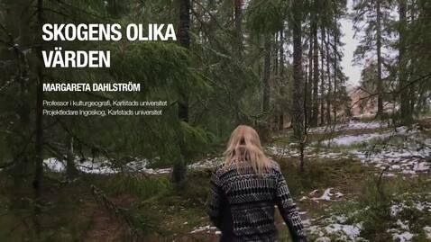 Thumbnail for entry Skogens värden. Promo-film för LRA workshop 2019