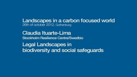 Tumnagel för Legal landscapes in biodiversity and social safeguards
