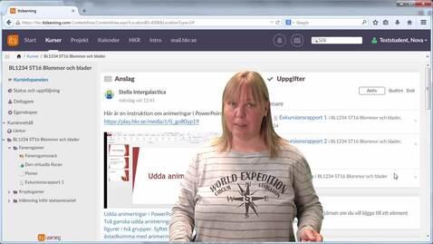 Miniatyr för inlägg itslearning - personlig information