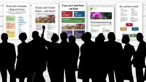 Miniatyr för inlägg Bilder till din poster - foton, figurer och diagram