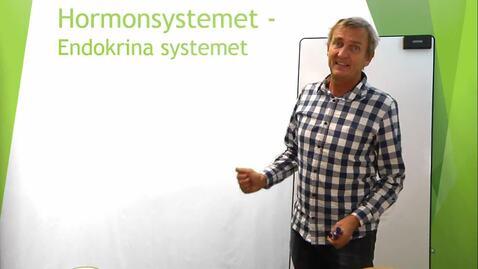 Miniatyr för inlägg Hormonsystemet del 1