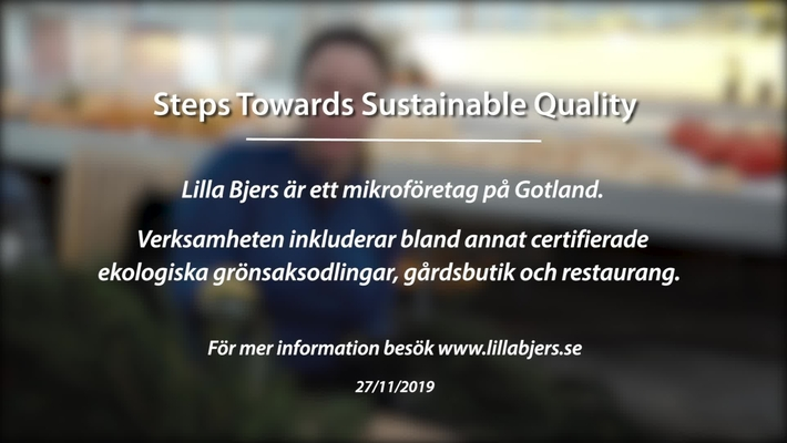 Module 4: Steps towards sustainable quality. Lilla Bjers