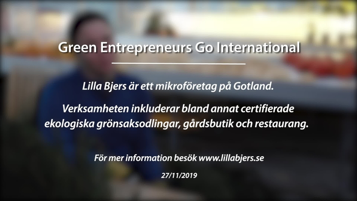 Module 8: Green entrepreneurs go international. Lilla Bjers