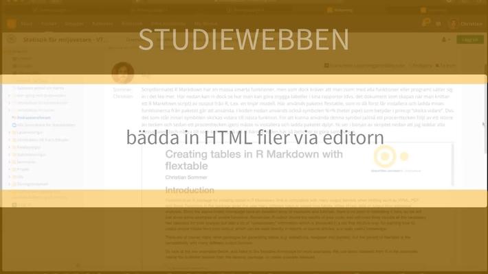 Bädda in html kod i editorn