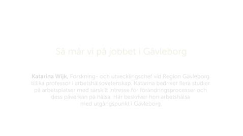 Thumbnail for entry Forskarna på slottet 9 oktober 2018 - Så mår vi på jobbet i Gävleborg