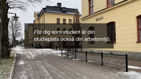 Thumbnail for entry Emelie Carlström, huvudstuderandearbetsmiljöombud 20201202