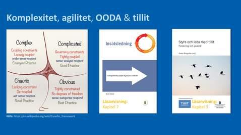 Miniatyr för inlägg Ledningsform del 3 - Komplexitet - Agilitet - OODA & Tillit