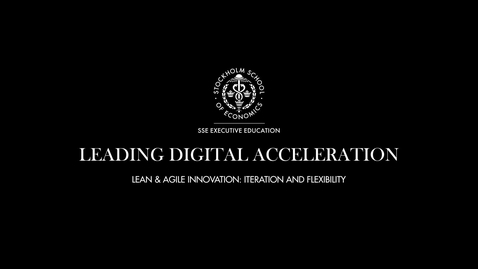 Thumbnail for entry LDA - Lean & Agile Innovation - Iteration & flexability