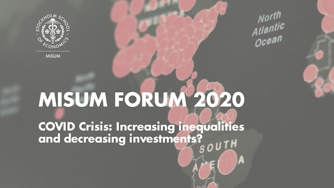Thumbnail for entry Misum Forum 2020 - Panel Session 2: Decrease in Strategic Investments (?)