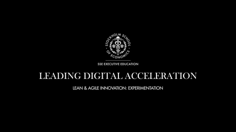 Thumbnail for entry LDA - Lean & Agile Innovation - Experimentation