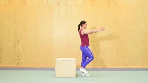 Thumbnail for entry KI Single-leg box squat