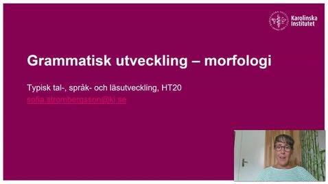 Thumbnail for entry Grammatisk utveckling - morfologi