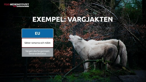 Thumbnail for entry EU till vardags - kap 3.2