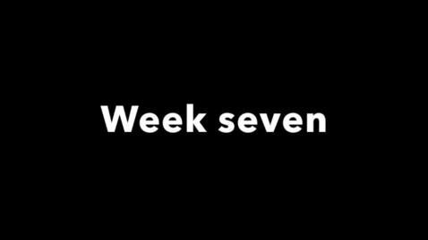 Miniatyr för mediepost week seven