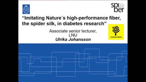 Thumbnail for entry Imitating Nature ́s high-performance fiber, the spider silk, in diabetes research