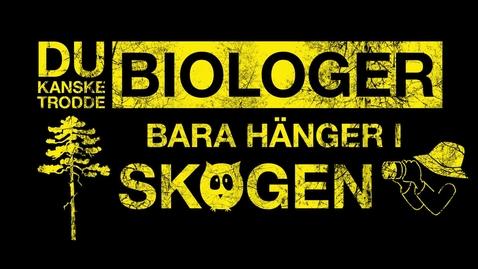 Thumbnail for entry Biologiprogrammet – för dig som vill vara med och rädda världen, på riktigt