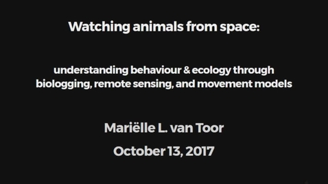 Miniatyr för mediepost Watching animals from space: understanding behaviour & ecology through biologging, remote sensing, and movement models