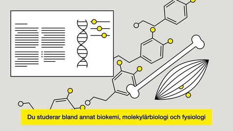 Thumbnail for entry Studera till biomedicinsk analytiker