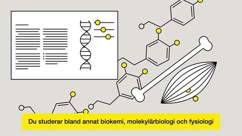 Thumbnail for entry Studera till biomedicinsk analytiker