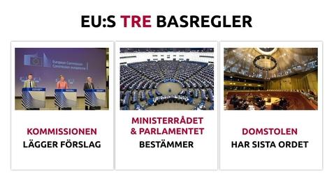 Thumbnail for entry EU till vardags - kap 1.1