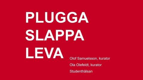 Thumbnail for entry Plugga Slappa Leva