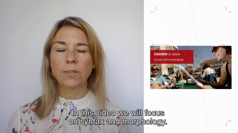 Thumbnail for entry Danish Syntax and Morphology _ international students_2020
