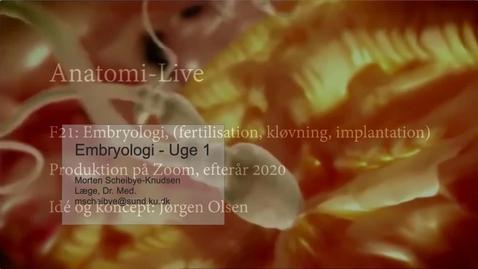 Thumbnail for entry F21 Embryologi 1 Zoom - E2020