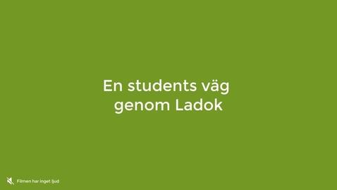 Miniatyr för inlägg En students väg genom Ladok